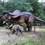 Triceratops family - Copy